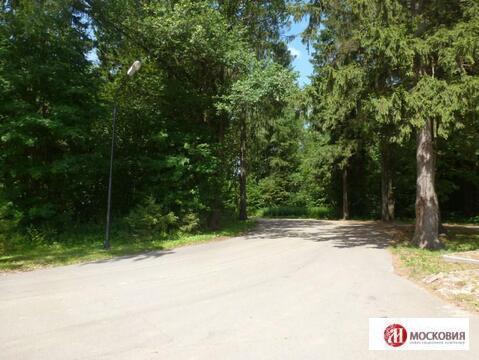 Лесной земельный участок 15 соток, все коммуникации, 30 км от МКАД - Фото 1