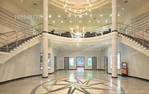 Общая арендуемая площадь: 15 419 м2 - Фото 3