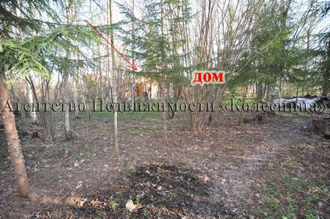 Ореховка. Лесной участок 20 соток с 2-этажным срубом дома, срубом бани - Фото 4