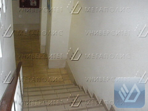 Сдам офис 103 кв.м, Адмирала Макарова ул, д. 8 - Фото 4