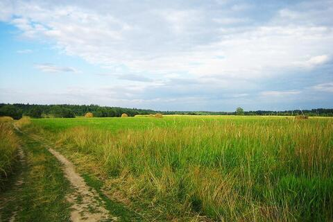 Пп участок сельхоз назначения 50 Га ровный сухой электричество - Фото 1