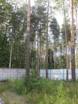 Сдается дом 400м2 в живописном месте, пос. Кузьмолово - Фото 5