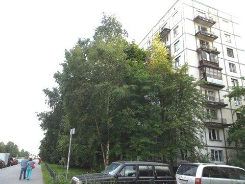 Отличная 2ккв в 5минутах от м.Гражданский пр, Купить квартиру в Санкт-Петербурге по недорогой цене, ID объекта - 320810026 - Фото 1