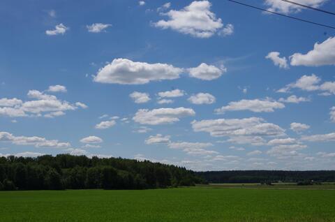 Участок 25 сот. д. Никифоровское, 60 км, рядом лес, река, асфальт. - Фото 3
