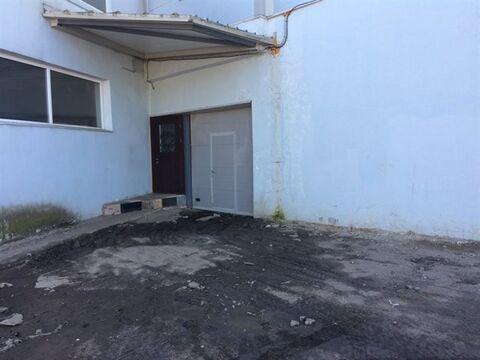 Сдам складское помещение 246 кв.м, м. Звездная - Фото 1