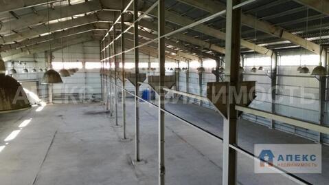 Аренда помещения пл. 2880 м2 под производство, склад, , офис и склад . - Фото 1