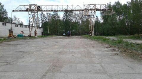 Сдам складское помещение 823 кв.м, м. Проспект Ветеранов - Фото 2
