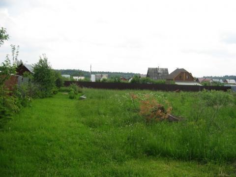 Деревня Петелино. 15 соток, ИЖС, Магистральный газ, 35 км. от МКАД - Фото 2