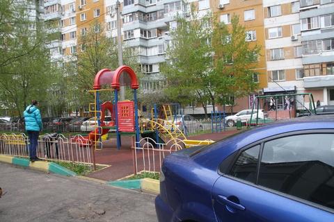 http://cnd.afy.ru/files/pbb/max/4/49/49d1a7abe8137aee916a2b031948975601.jpeg