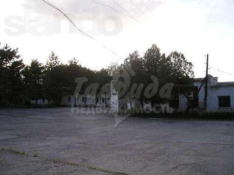 Продажа производственной базы под складской комплекс в Старом Крыму - Фото 2
