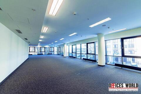 Офис, 765 кв.м. - Фото 5