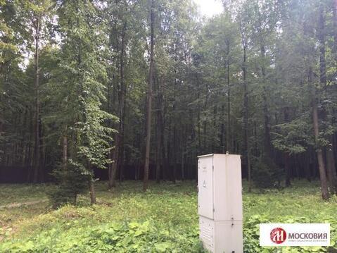 Лесной участок 15 соток, в поселке бизнес-класса, г. Москва. - Фото 1