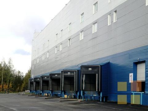 Склад класса А на Шафировском, 2700 кв.м, офисы - Фото 3
