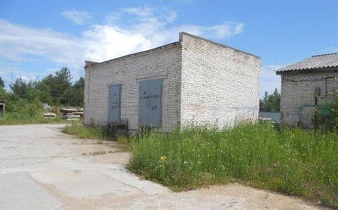 Продам производственное помещение 17174 кв.м, м. Проспект Просвещения - Фото 4