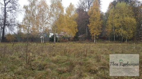 Участок 24 сотки на опушке в деревне Старокурово Ступинский район - Фото 1