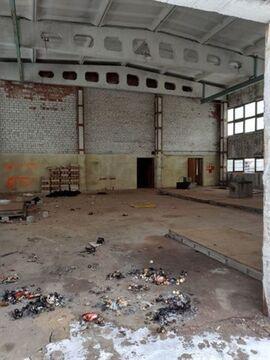 Сдам складское помещение 1150 кв.м, м. Старая деревня - Фото 4