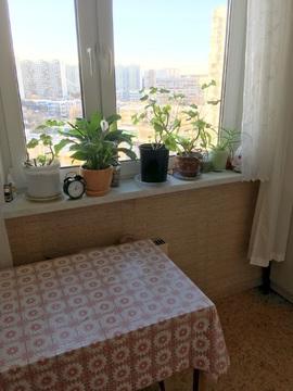 Продажа 1 комн квартиры в Митино - Фото 3