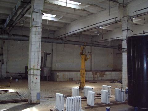 Сдаются производственно-складские помещения 1000 м2 - Фото 5