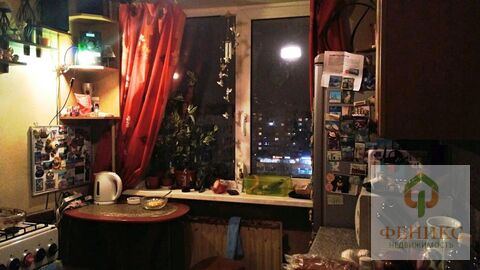 Квартира пр.просвещения - Фото 4