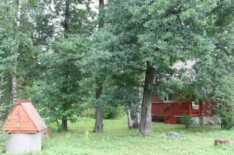Лесной участок 30 соток в поселке премиум-класса Новой Москвы - Фото 3