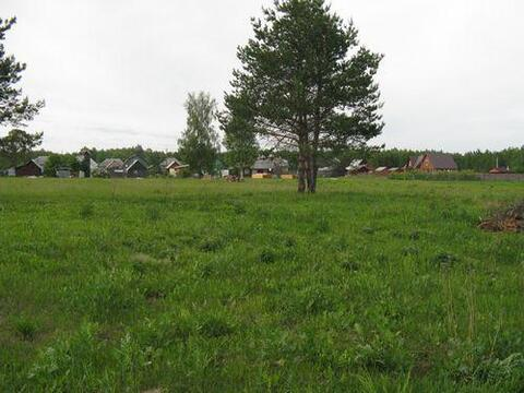15 соток в д.Ново-Аносово, Клепиковского района, Рязанской области. - Фото 1