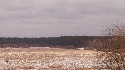 Продается земля 4,2 га с.Высокиничи Жуковский р-н - Фото 2