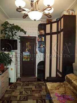 Продажа комнаты, м. Горьковская, Малая Посадская ул - Фото 2