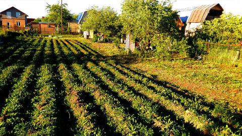 Продажа дачи в ближайшем пригороде Санкт-Петербурга - Фото 3