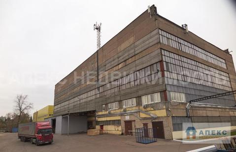 Продажа помещения пл. 22800 м2 под производство, , Быково Егорьевское . - Фото 5