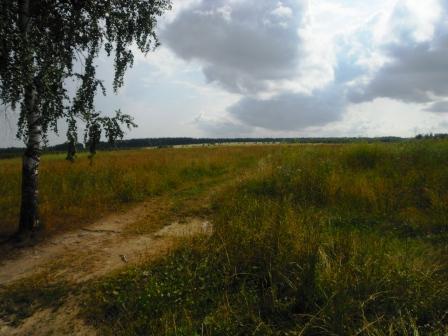 Усадьба 8 га. в 90 км от Нижнего Новгорода - Фото 3