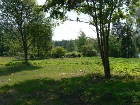 Отличное предложение от собственника, участок на реке Хотча, Волга - Фото 4