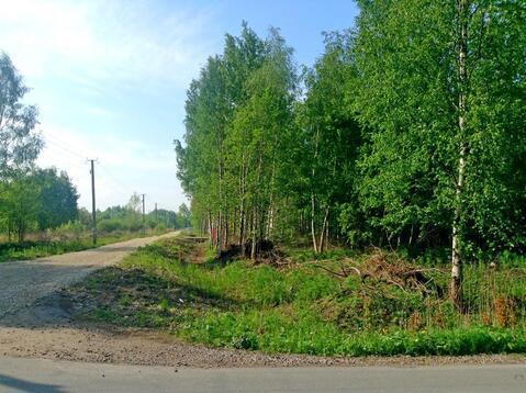 Земельный участок (9 соток) в СНТ Дони Гатчинского района - Фото 4