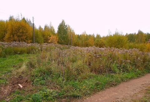 Продам земельный участок 26 соток в деревне Утечино. - Фото 1