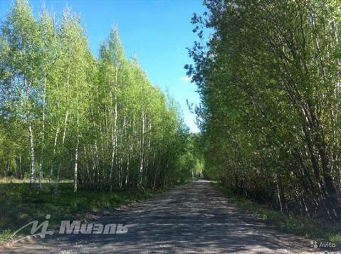 Продажа участка, Вельяминово, Домодедово г. о. - Фото 5