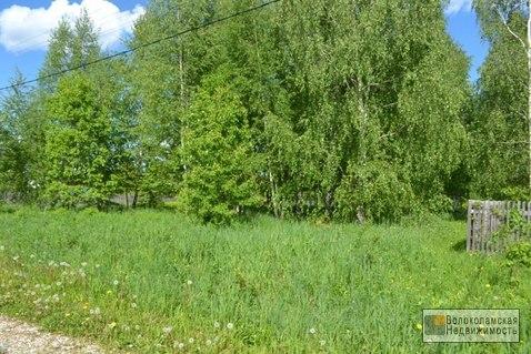 Участок 15 соток в д.Козино Волоколамского района - Фото 2
