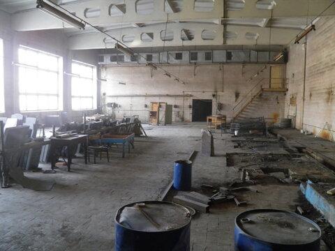 Продажа производственного помещения г. Выборг - Фото 3
