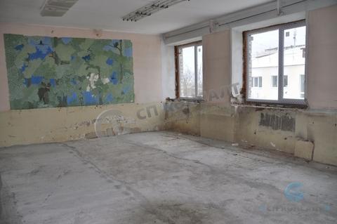 Сдаю помещения на Кирова от 350 кв.м. - Фото 1