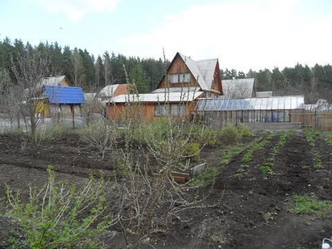 Сад на Чусовском тракте - Фото 4