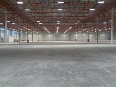 Сдам складское помещение 6500 кв.м, м. Комендантский проспект - Фото 3