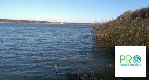 Участок в Пуляевке с выходом к воде - Фото 4