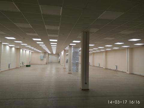 Сдается помещение 300м2, в Приморском р-не, на ул. Камышовая, д.17 - Фото 1