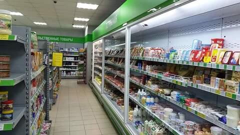 Продаю бизнес 370 кв.м, продукты, г.Солнечногорск, - Фото 5