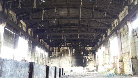 Предлагается к продаже промышленная земля с построенным складом - Фото 4