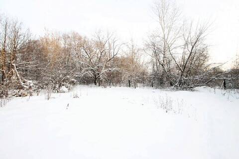 Земельный участок в центре Заводоуковска - Фото 1