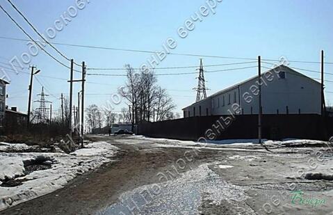Новорижское ш. 110 км от МКАД, Волоколамск, Участок 203.4 сот. - Фото 4