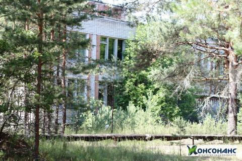 Имущественный комплекс с земельным участком на берегу Рыбинского вдхрщ - Фото 5