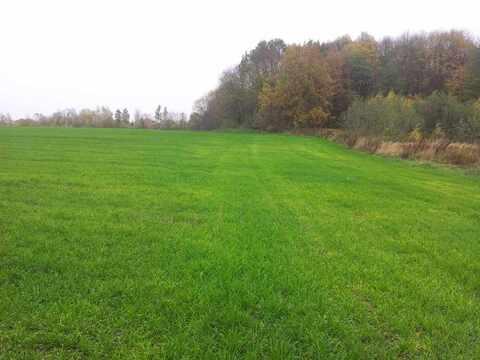 Продам: земельный участок 1000 соток - Фото 5
