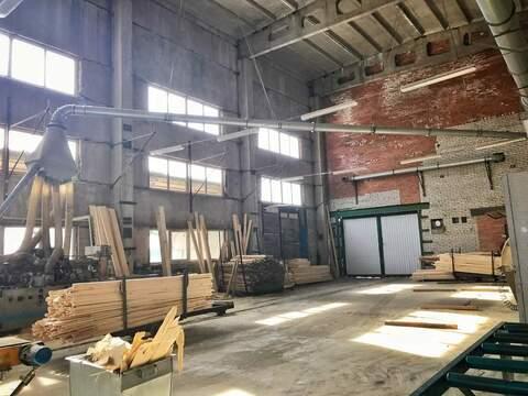 Продажа действующего деревообрабатывающего завода - Фото 3