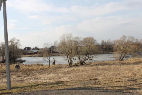 12 соток д.Шубино Домодедовского района - Фото 2