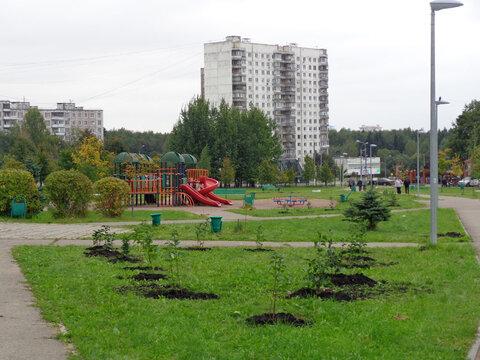 3-х комнатная в Ясенево - Фото 1